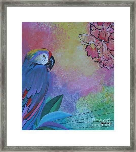 Parrot In Paradise Framed Print