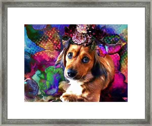 Party Animal Framed Print