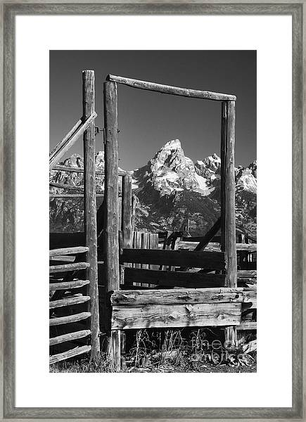 Past Its Time Framed Print