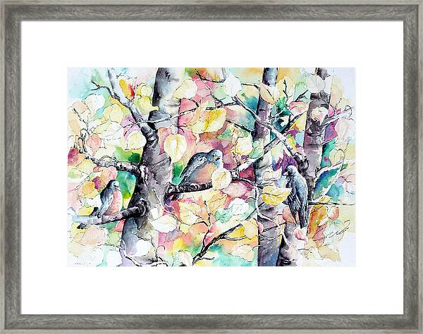 Pastel Aspen With Robins Framed Print
