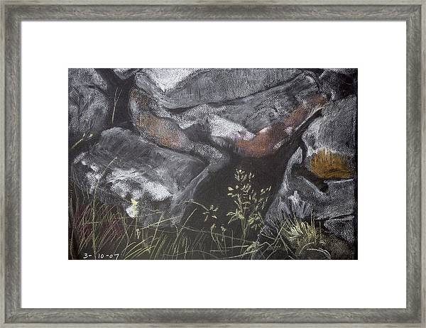 Pastel Stones And Plants On Black Framed Print