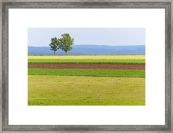 Pastoral Minimalism Framed Print
