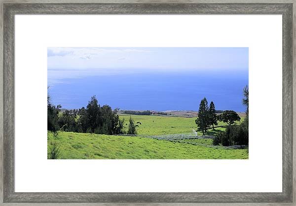 Pasture By The Ocean Framed Print