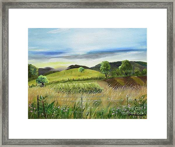 Pasture Love At Chateau Meichtry - Ellijay Ga Framed Print