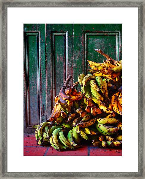 Framed Print featuring the photograph Patacon by Skip Hunt