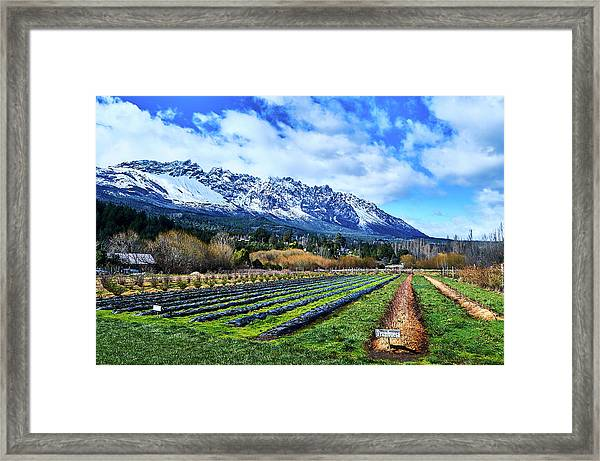 Landscape With Mountains And Farmlands In The Argentine Patagonia Framed Print