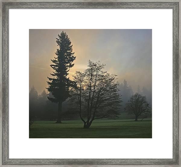 Patchy Morning Fog Framed Print