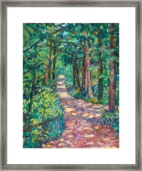 Path On Sharp Top Framed Print