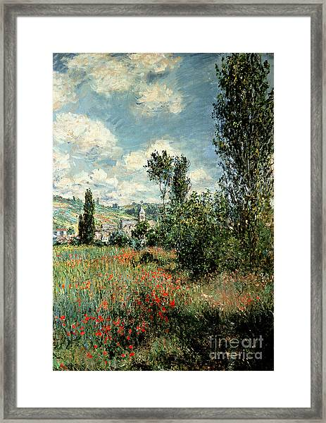 Path Through The Poppies Framed Print