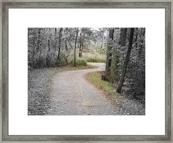 Path To Discovery Framed Print