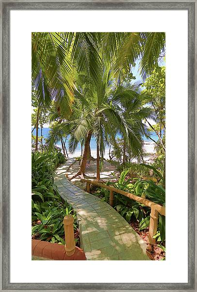 Path To Paradise Framed Print