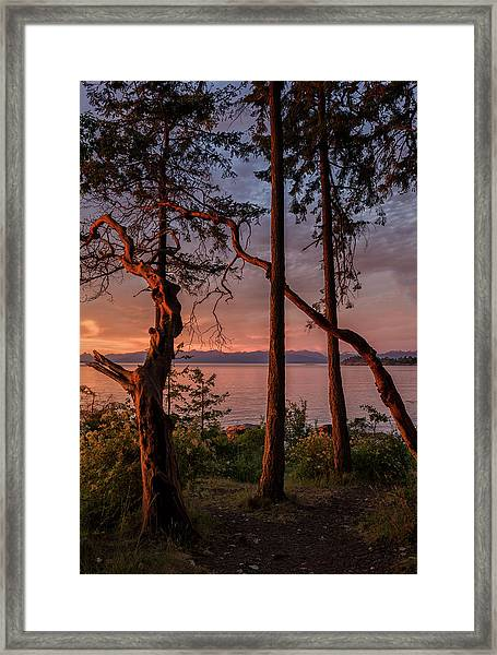 Framed Print featuring the photograph Path To Paradise by Randy Hall