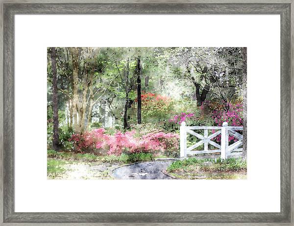 Path To The Bridge Framed Print