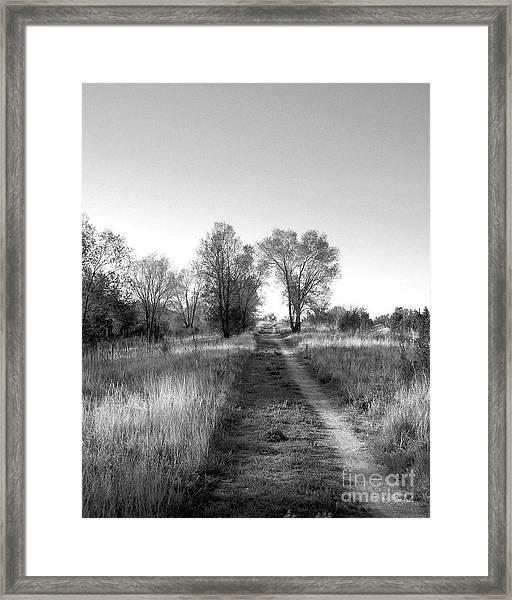 Path Yet Taken Framed Print