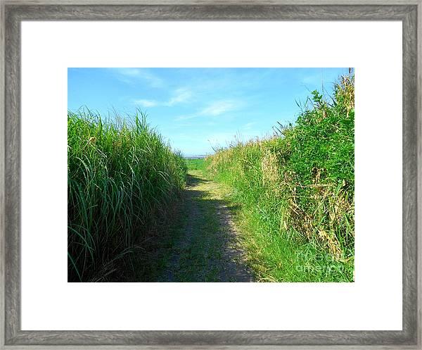 Makati Framed Art Prints | Fine Art America
