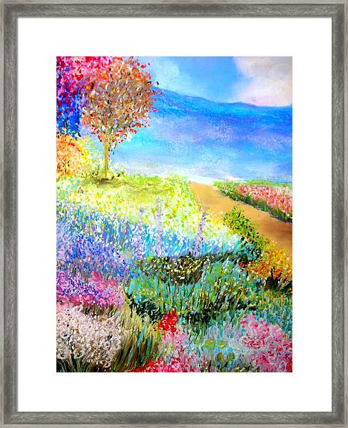Patricia's Pathway Framed Print