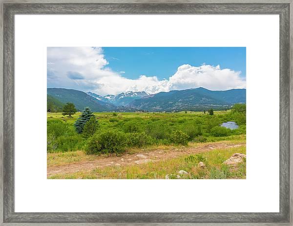Peaceful Meadow Framed Print