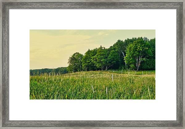 Peaceful Pastures Framed Print