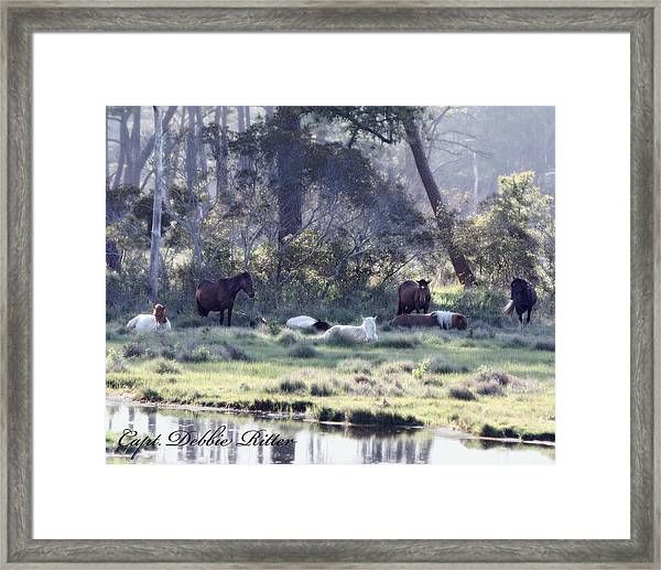 Peaceful Water 2 Framed Print