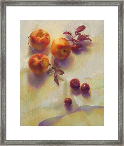 Peaches And Cherries Framed Print by Cathy Locke
