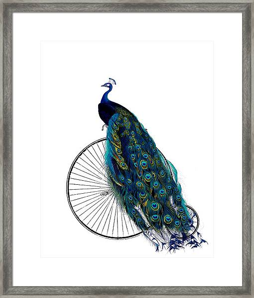 Peacock On A Bicycle, Home Decor Framed Print