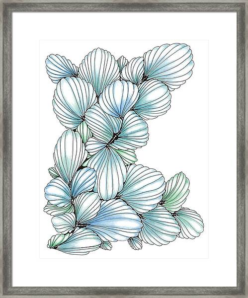 Pearlescent Plume Framed Print