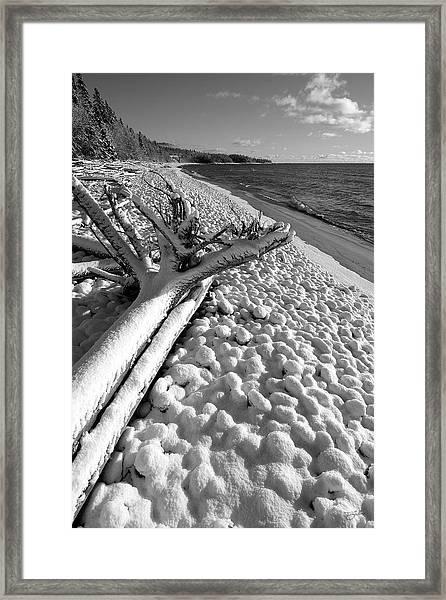 Pebble Beach Winter Framed Print