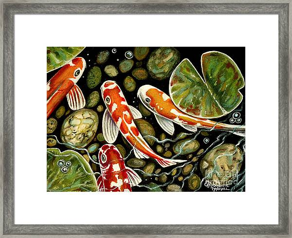 Pebbles And Koi Framed Print