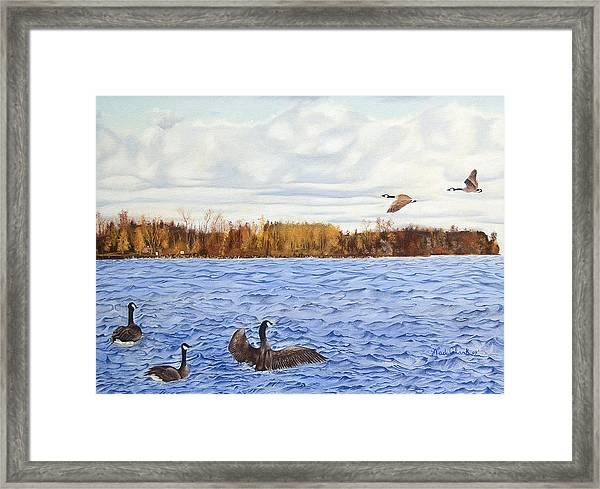 Peche Island Canadas Framed Print