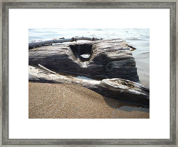 Framed Print featuring the photograph Peekaboo by Gigi Dequanne