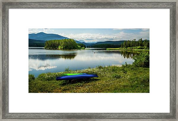 Pelicans At Shadow Mountain Lake Framed Print