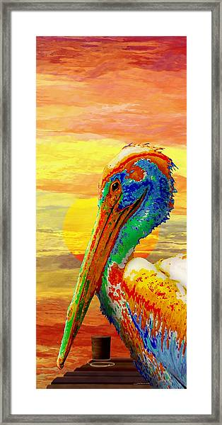 Pelicans Wharf Tequila Sunset Framed Print