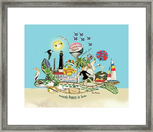 Pensacola Protects Its Turtles Framed Print