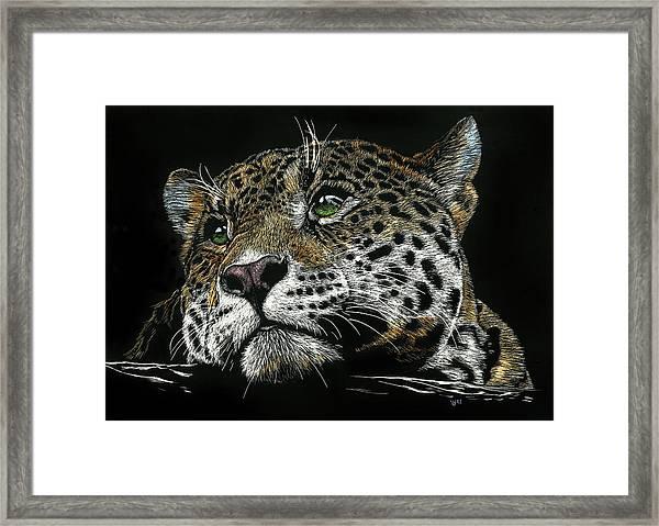 Pensive Leopard Framed Print