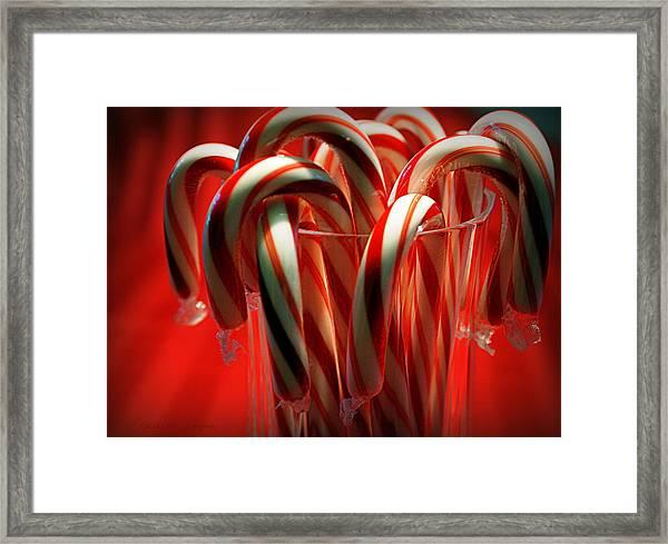 Peppermint Jumble Framed Print