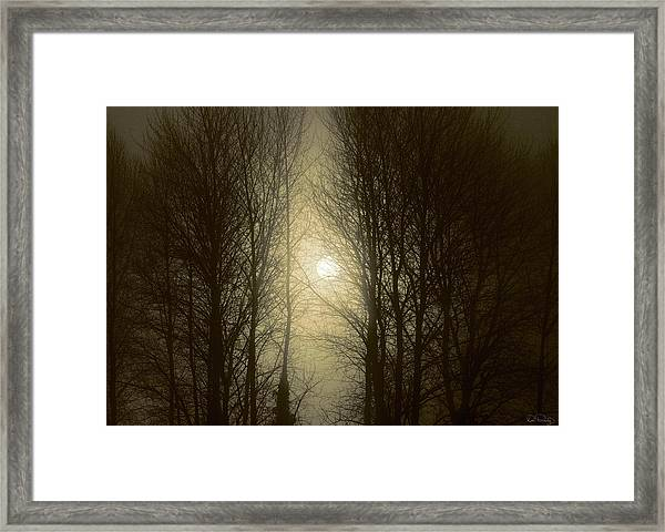 Framed Print featuring the photograph Perception by Dee Browning
