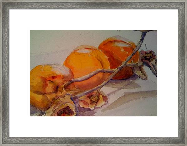 Persimmons Framed Print by KC Winters