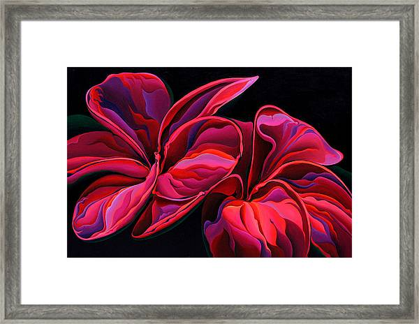 Petal Pageant  Framed Print