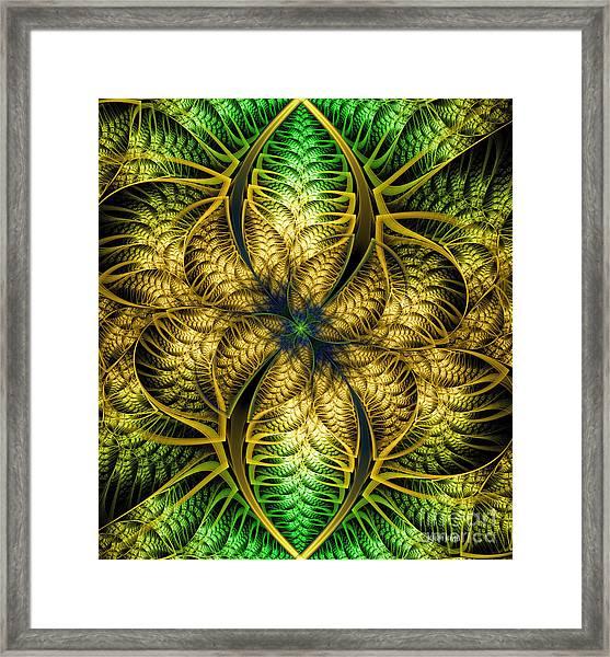 Petals Of Life Framed Print