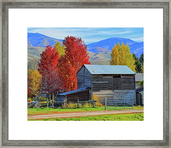 Peterson Barn In Autumn Framed Print