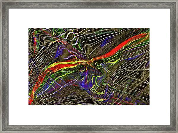 Flight Of Petrel Framed Print