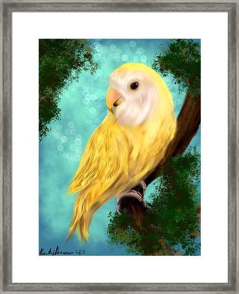 Petrie The Lovebird Framed Print