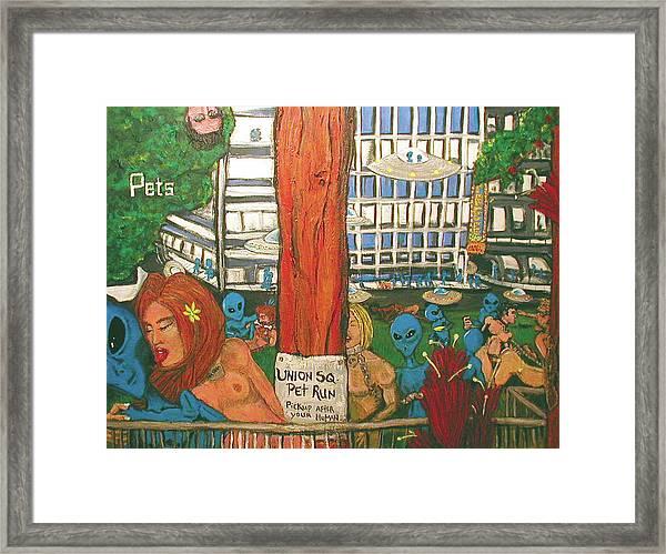 Pets Framed Print