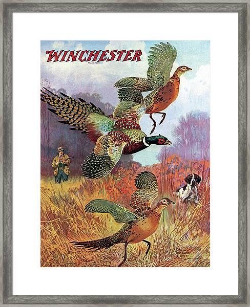 Pheasants On The Rise Framed Print
