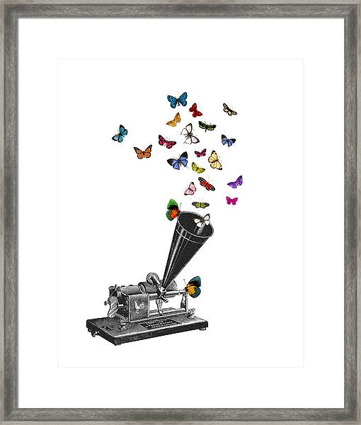 Phonograph And Butterflies Print Framed Print