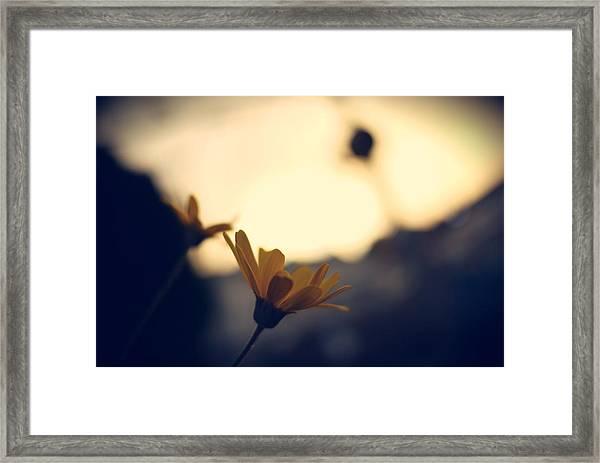Photo4 Framed Print