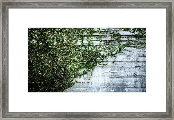 Photo6 Framed Print
