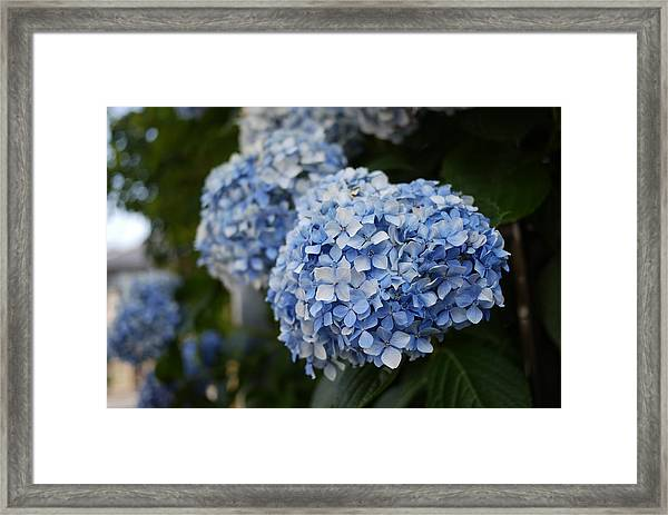 Photo9 Framed Print