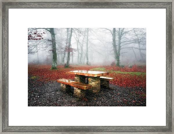 Picnic Of Fog Framed Print