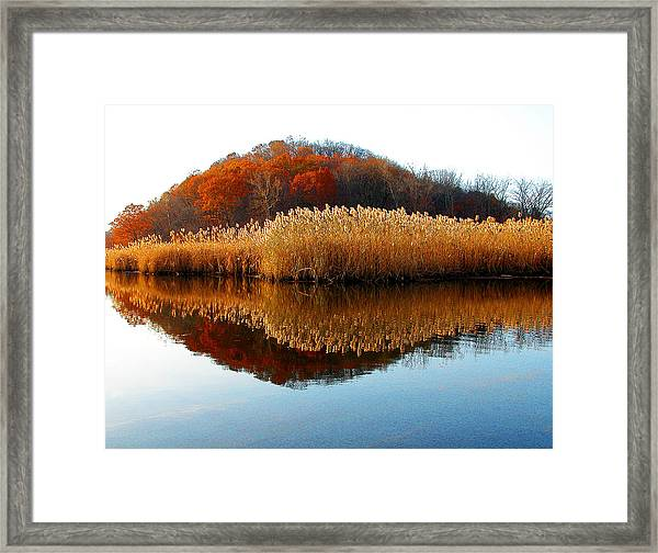 Piermont Backwater Framed Print